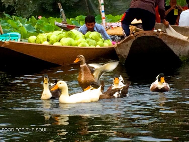floating vegetable market- Kashmir